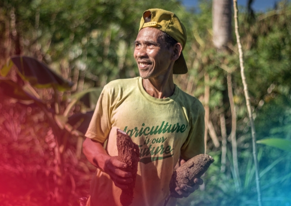 "A man wearing a yellow cap backwards and a yellow t-shirt that says, ""agriculture is our future,"" proudly holds up taro that he's grown on his farm in the Philippines. He's looking upwards,to the right, into the sunlight."