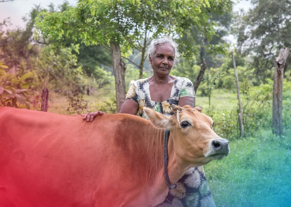 A lady stands with a hand on her in Sri Lanka as part of a Tearfund NZ farming co-operative
