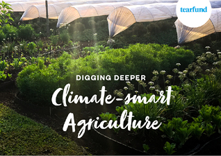 Digging Deeper Climate-smart Agriculture